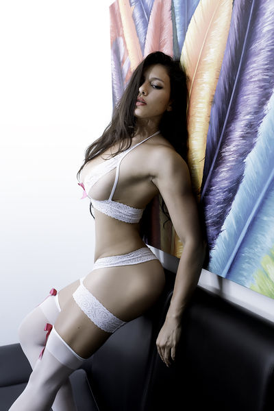 Brunette Escort in League City Texas