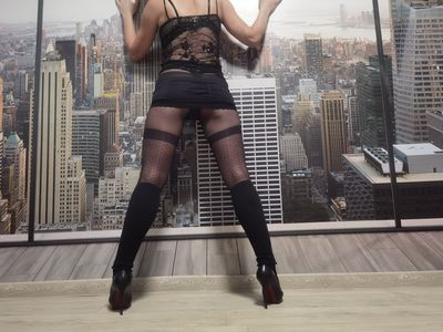 What's New Escort in Cary North Carolina